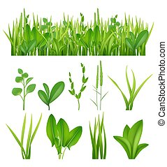 Grass realistic. Ecology set green herbs leaves plants lifes meadows vector elements collection