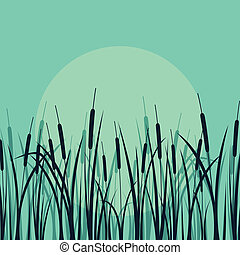 Grass, reed and wild plants detailed silhouettes illustration background vector in moonlight