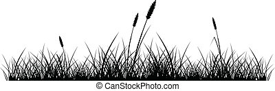 Grass silhouette - vector silhouette of grass on white ...