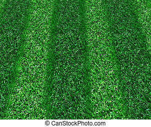 stripped grass