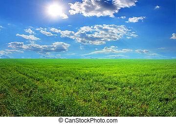 Grass sun clouds