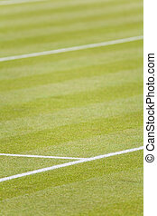 Grass tennis court - Detail of white lines on a grass tennis...