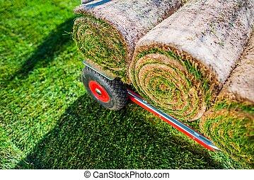Grass Turfs Rolls
