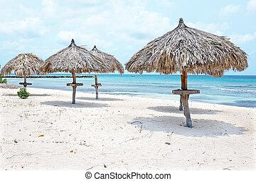 Grass umbrellas at the beach on Aruba island