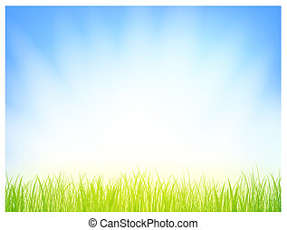 grass with sun shine over blue sky, copyspace for your text