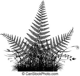 Grass vector silhouette with fern