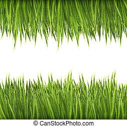 grass., vert, vector., fond, nature