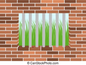Grass viewed from a jail window