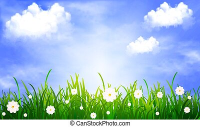 Grass with daisies on a background of blue sky with clouds