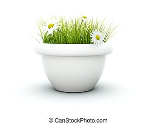 Grass with flowers isolated on white