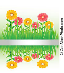 grass with flowers isolated