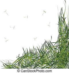 grass with stems