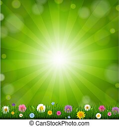 Grass With Sunburst Background