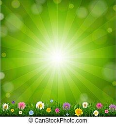 Grass With Sunburst Background