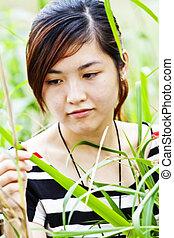 grassen, vrouw, aziaat, natuur
