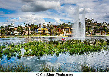 Grasses and a fountain in Echo Park Lake, in Los Angeles,...