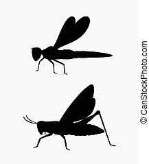 Grasshopper and Dragonfly Shapes - Grasshopper and Dragonfly...