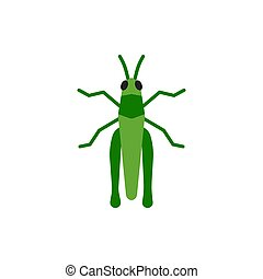 Grasshopper insect cricket single flat vector icon