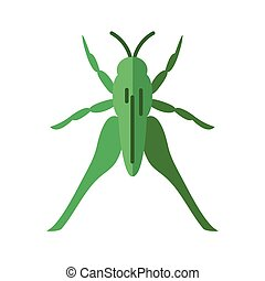 grasshopper insect, flat style icon