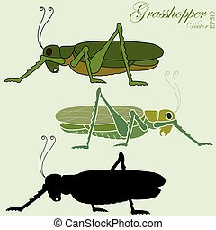 grasshopper vector - grasshopper, green jumper insect,...