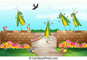 Grasshoppers near a wall