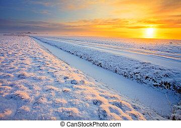 Grassland in winter at sunset