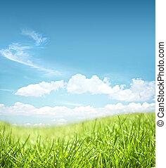 Grassland landscape - beautiful grassland landscape on a sky...