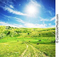 Grassland - meadow