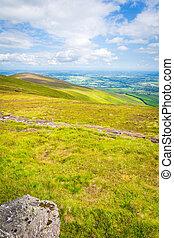 Grassland on the ridge of Blackstairs Mountains
