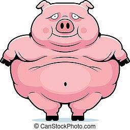 grasso, maiale