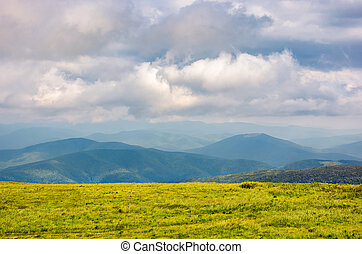 grassy alpine meadow in cloudy weather. beautiful landscape...