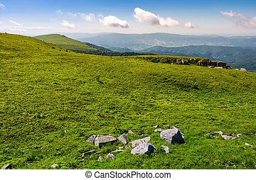 grassy alpine meadow of Polonina Runa. beautiful nature of...