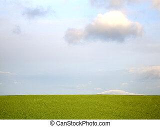 Grassy Field and Sky 3