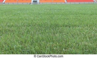Grassy field empty stadium - Camcorder moves the grassy...