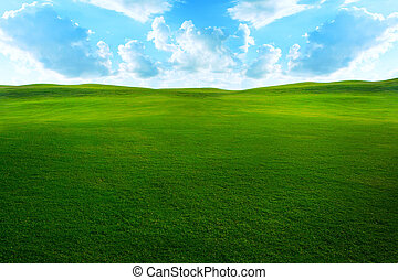 Green grassy meadow with beautiful clouds and sky.