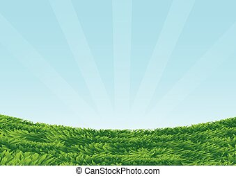 Grassy Field on blue sky background-Vector Illustration