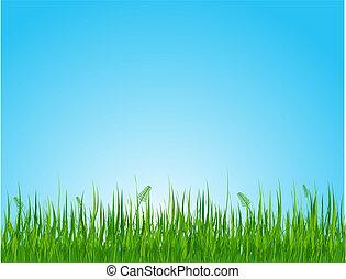 Seamless illustration of summer grassy field