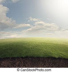 Grassy field underground - Beautiful grassy field with dirt...