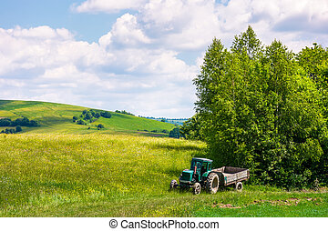 grassy fields on rolling hills in summer. beautiful...