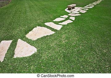 Grassy green lawn