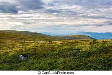 grassy hill in late summer. beautiful mountainous landscape...