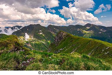 grassy hill on rocky cliffs of Fagaras mountains. beautiful...