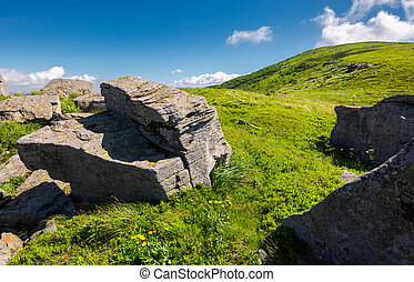 grassy hill side with boulders. beautiful summer scenery in...