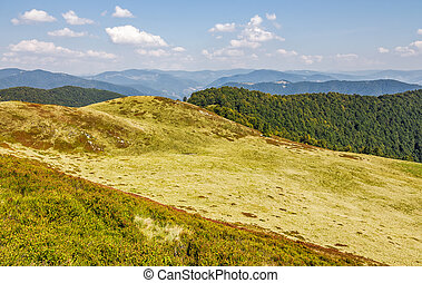 grassy hills of mountain ridge. beautiful nature background