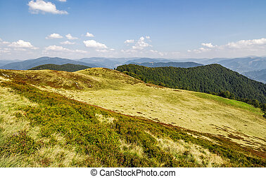 grassy hills of mountain ridge in autumn - grassy hills of...