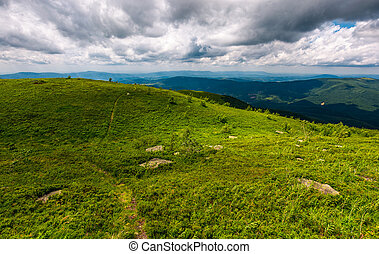 grassy hills on a cloudy day in Carpathians. beautiful...