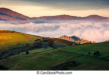 grassy hillside above the thick fog in mountains. gorgeous...