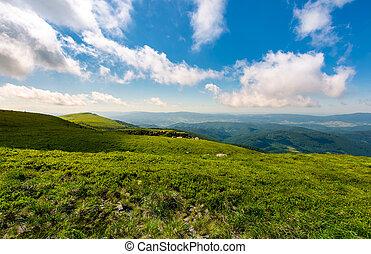 grassy hillside meadow in the morning. mountain peak in the...