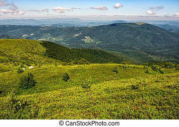 grassy hillside of Carpathian mountain range. beautiful...