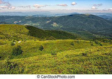 grassy hillside of Carpathian mountain range. beautiful...
